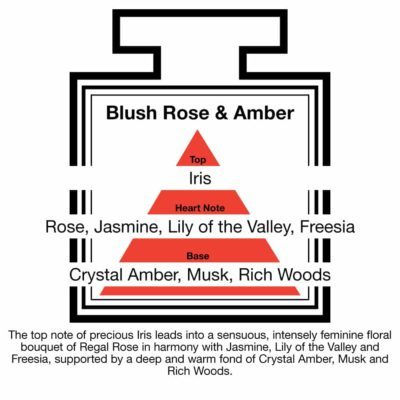 Fragrance Description Blush Rose Amber Jasmine Freesia Wood