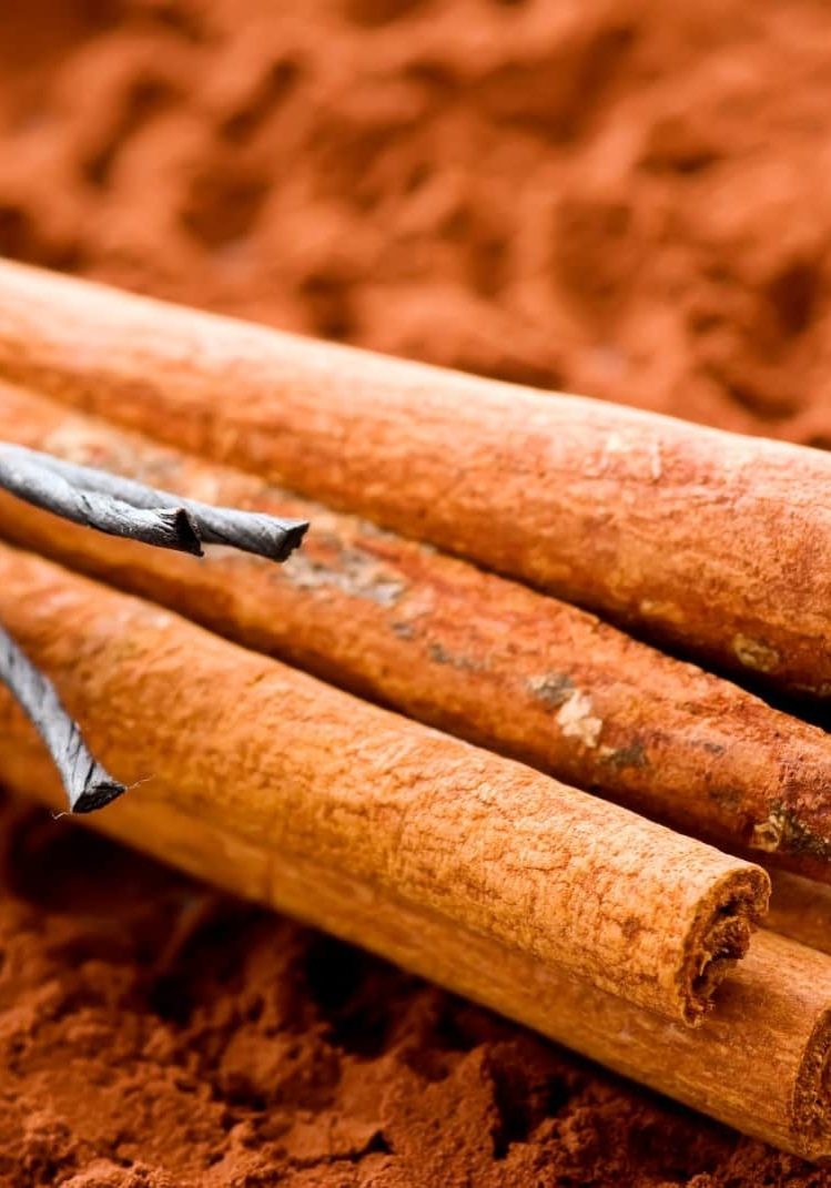 Spice Cinnamon Reed Diffuser Sticks Ground Roll