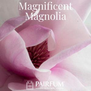 Magnificent Magnolias Fragrance Windsor Park