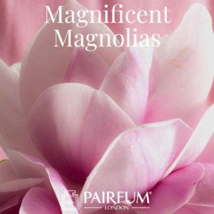 Magnificent Magnolias Perfume Windsor Park