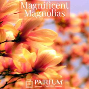 Magnificent Magnolias Windsor Park Fragrance Ingredient