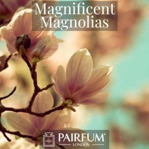 Magnificent Magnolias Windsor Park Perfume Ingredient