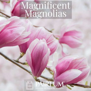 Perfume Magnificent Magnolias Windsor Park