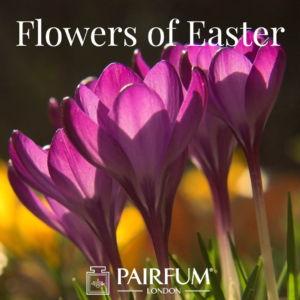 Pairfum London Flower Fragrances Of Easter Crocus