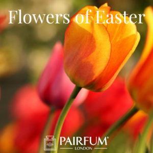 Pairfum London Flowers Of Easter Tulip