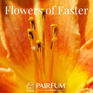 Pairfum London Fragrance Lily Flowers Of Easter