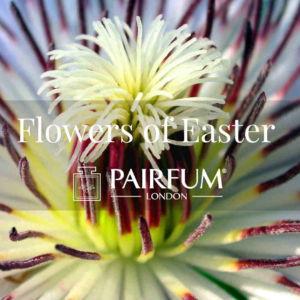 Pairfum London Perfumed Flowers Of Easter Passion Flower