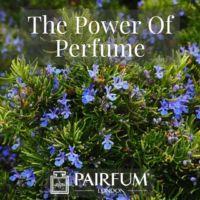 PERFUME TREND BLUE FLOWER SHRUB