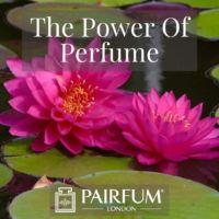 PERFUME TREND PINK FLOWERS ON LILIPADS