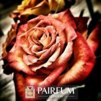 PERFUME RED ROSE ARTWORK