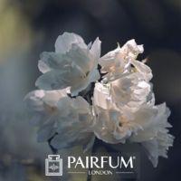 FRAGRANCE TREND WHITE FLOWER