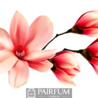 RED MAGNOLIA FLOWER ARTWORK
