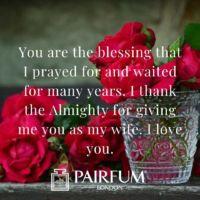 Romantic Rose Petals Love Messages
